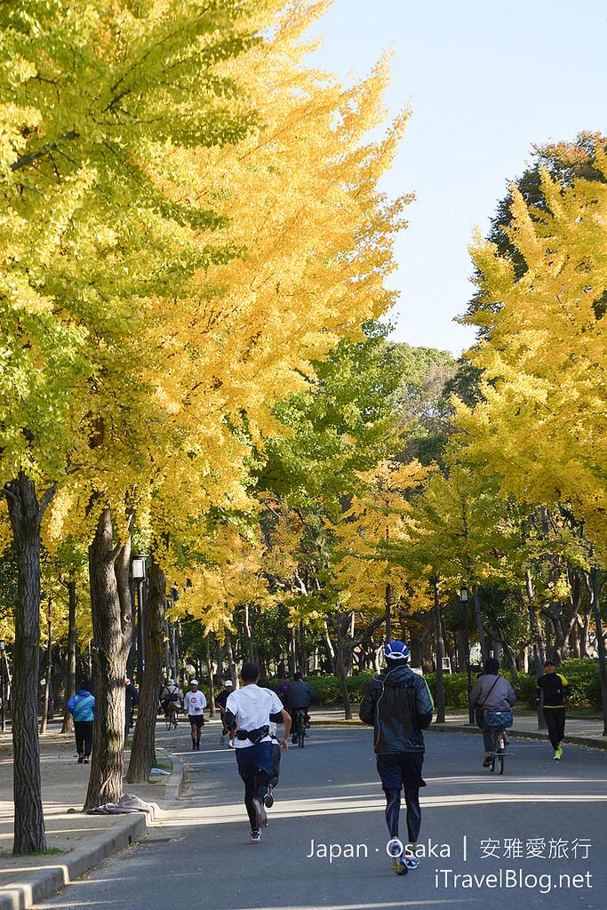 《大阪景點推薦》日本大阪城公園:體驗秋天銀杏片片與庶民日常生活的公園。