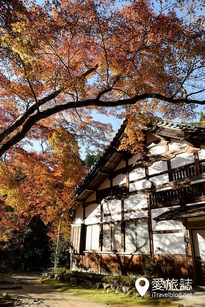 《京都賞楓景點》槙尾山西明寺:高雄三尾位於神護寺與高山寺之間精緻閒適的賞楓名所。