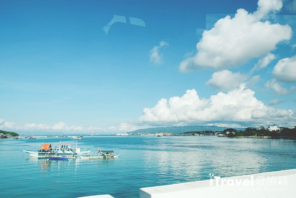 《菲律賓自由行》5天4夜薄荷島行程攻略,享受海洋生態環繞的純淨。